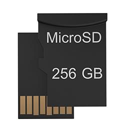 256 Гб microSD