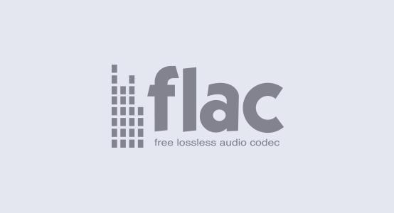 Поддержка аудиокодека FLAC